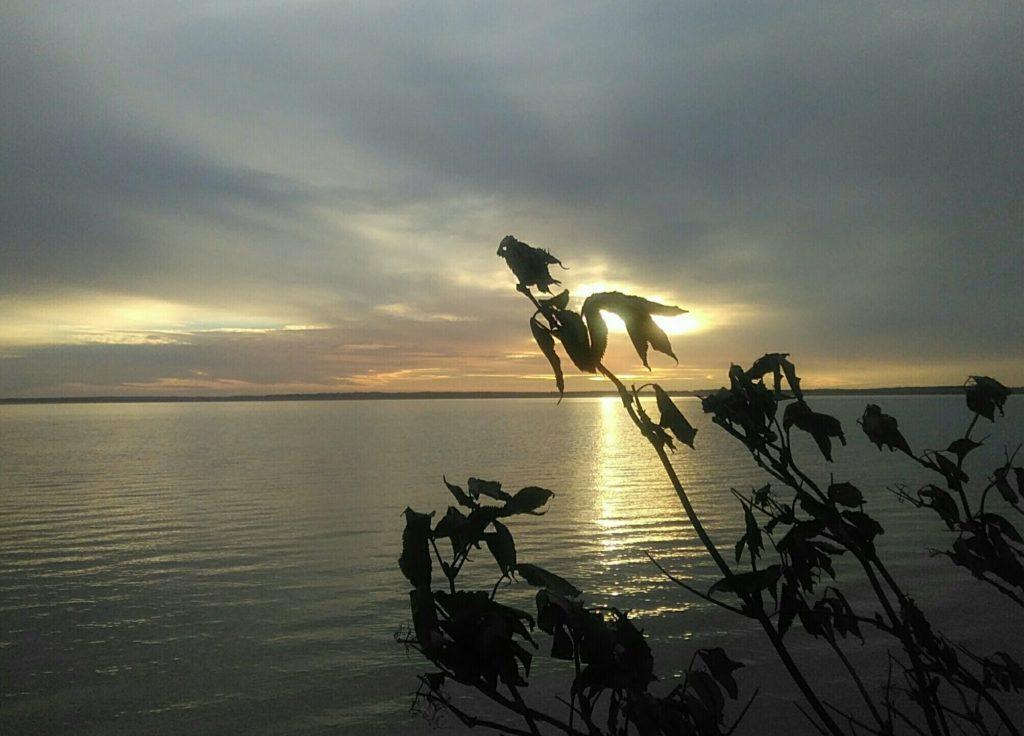 Säkylän Pyhäjärvi tyynellä